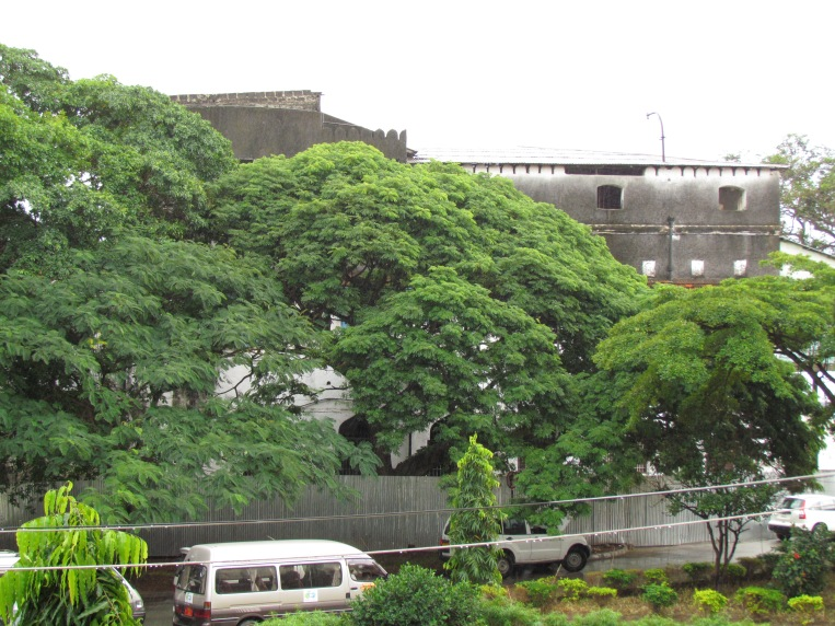 Flamboyant, Tamarind, Hibiscus and many more trees always offering some shade to passers-by