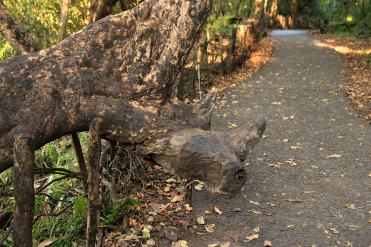 The rhino on a branch of  tree ...