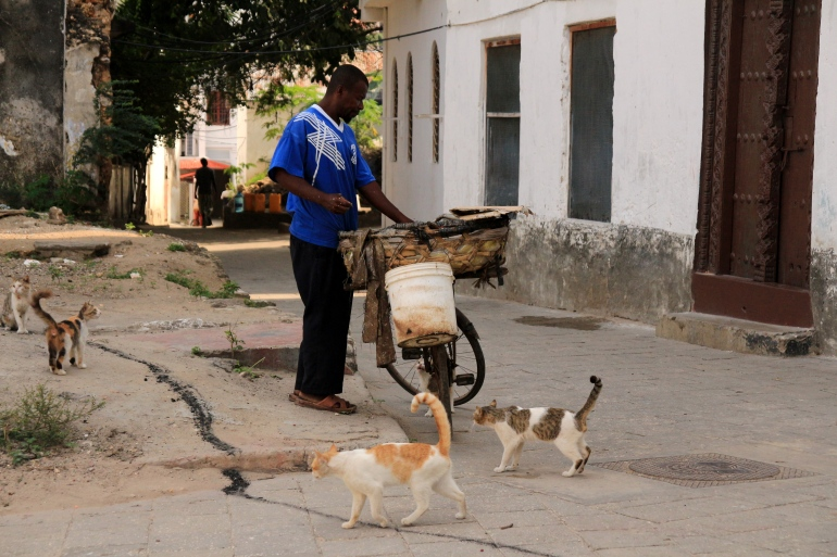 ...and then he arrived …The fish hawker and is bicycle with food for the cats …