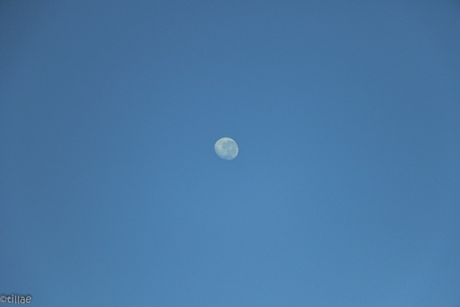 The moon followed us all day long …