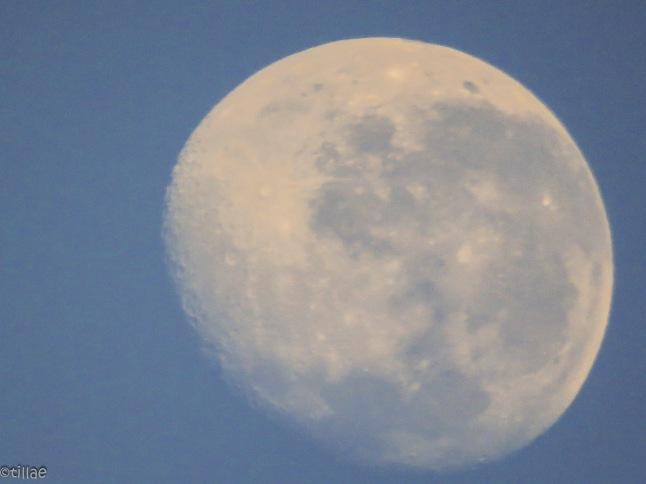 Hannahs moon